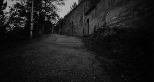 Pinhole_Parc_royat-1006